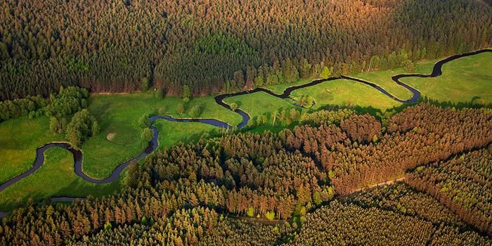 Meandry Ploučnice na tomto úseku
