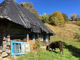 Ukrajina 208