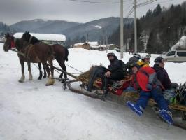 Koňské taxi :)